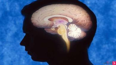 Photo of الدماغ البشري يصاب بالشيخوخة بدءا من سن الـ25