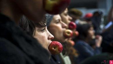 Photo of لماذا يعد التفاح من الأغذية الشافية؟