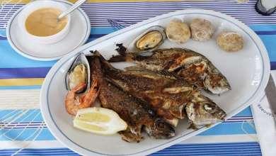 Photo of الأسماك .. أمل علاج مرض عصبي مستعص