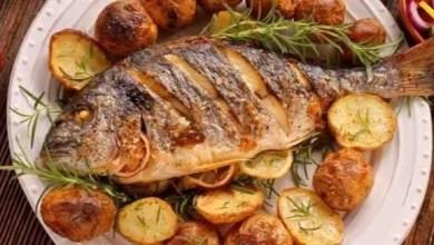 Photo of الأطعمة البحرية تزيد فرص الحمل