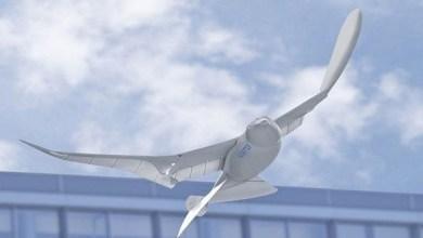 Photo of طائرات درون على هيئة طيور للتجسس على السكان في الصين