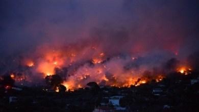 Photo of اليونان: ارتفاع حصيلة ضحايا الحرائق إلى 60 قتيلاً