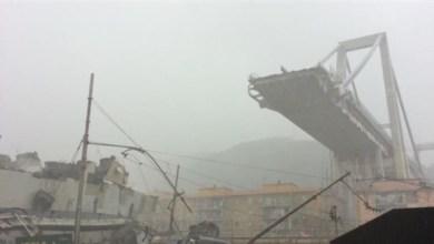 Photo of ارتفاع حصيلة ضحايا انهيار جسر جنوة في إيطاليا إلى 35 شخصاً