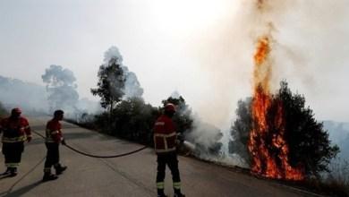 Photo of البرتغال: استمرار حرائق الغابات لليوم الـ 14