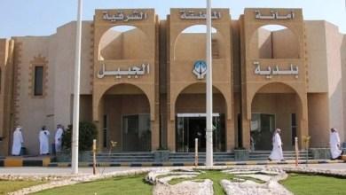 Photo of بلدية الجبيل تصادر 43 بسطة مخالفة و 240 كرتون خضروات وفواكه