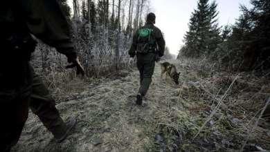 Photo of فنلندا بصدد إنشاء سياج على حدودها مع روسيا