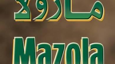 Photo of وظائف شاغرة في شركة مازولا بالشرقية وينبع