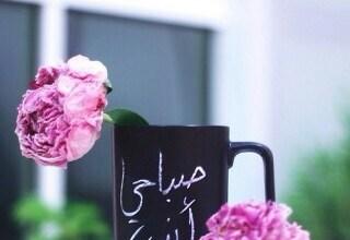 Photo of صور صباح الخير جميلة جداً