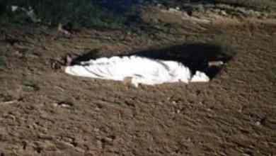 Photo of لغز العثور على جثة عقب هطول أمطار غزيرة في الكامل.. وهذا ما تم الكشف عنه من خلال معاينتها