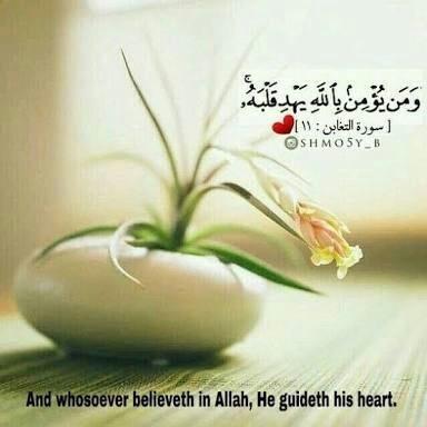 صور اسلامية ايات قرآنية مكتوب فيها