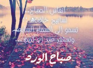 Photo of صور صباح الورد صباح الياسمين مكتوبة عليها كلام حلو للواتس