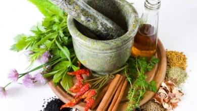 Photo of الهليون – السكوم – asparagus