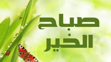 Photo of رسائل صباح الخير , عبارات للصباح الخير , كلمات صباحية