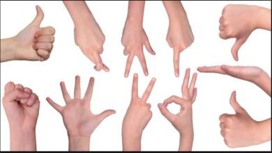 Photo of تعريف لغة الإشارة