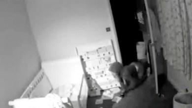 Photo of بالفيديو: يشاهد لصة تزحف في غرفة طفله عبر الكاميرا