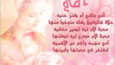Photo of شعر عن الأم , كلمات تهنئة عيد الام ,عبارات تهنئة عيد الأم