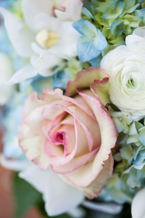 صور اجمل ورد جميلة
