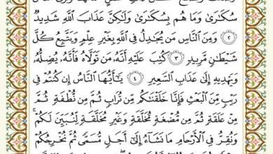 Photo of السورة التي وردت فيها سجدتان في القران الكريم من 4 حروف