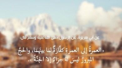 Photo of فضل اداء العمرة وثوابها