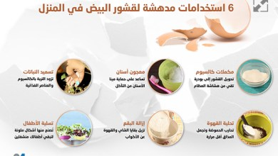 Photo of إنفوغراف: 6 استخدامات مدهشة لقشور البيض في المنزل