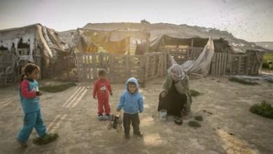 Photo of حل درس حياة البدو في الصحراء للاطفال