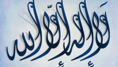 """Photo of كم مره ذكر """"لا إله إلا الله """"في القرآن"""
