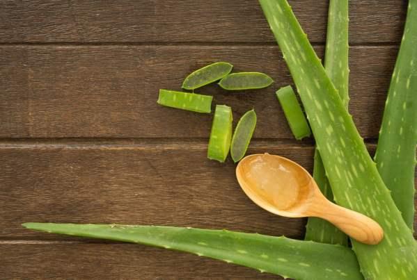 وصفة زيت شجرة الشاي مع هلام الألوفيرا