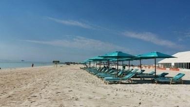Photo of بلدية أبوظبي تعزز خدماتها في شاطئ الحديريات