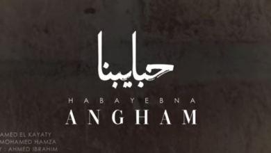Photo of كلمات حبايبنا – انغام مكتوبة