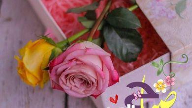 Photo of صباح الورد