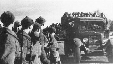 Photo of أستونيا تحيي ذكرى القصف السوفيتي المدمر خلال الحرب العالمية الثانية