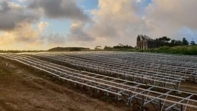 Photo of الإمارات تدشن 3 مشاريع رئيسية للطاقة الشمسية في الكاريبي