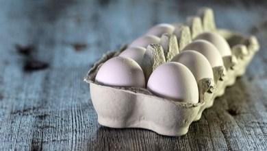 Photo of الإفراط في أكل البيض يرتبط بأمراض القلب