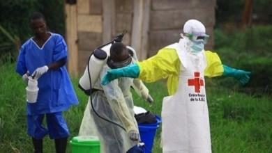 Photo of عدد حالات الإصابة بالإيبولا في الكونغو يتجاوز الألف حالة