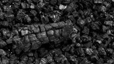 Photo of ما هي أضرار الفحم الصناعي