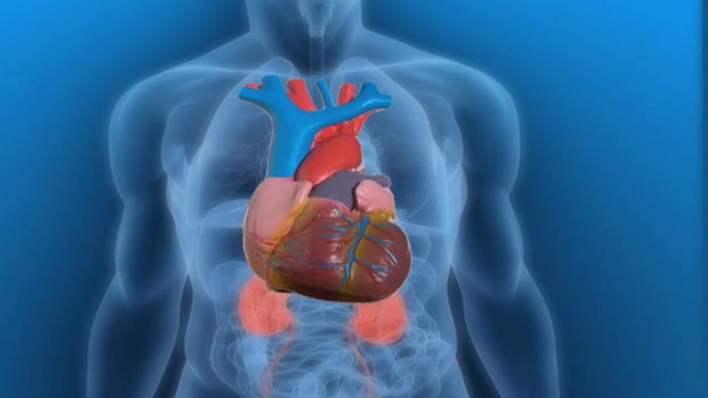 ادوية روماتيزم القلب