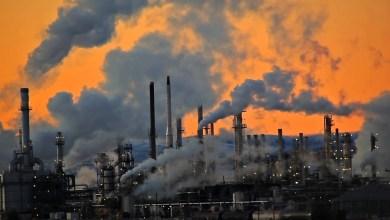 Photo of موضوع حول البيئة