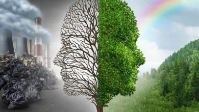 Photo of موضوع تعبير عن تلوث البيئة