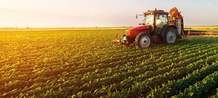 حكم عن الزراعة