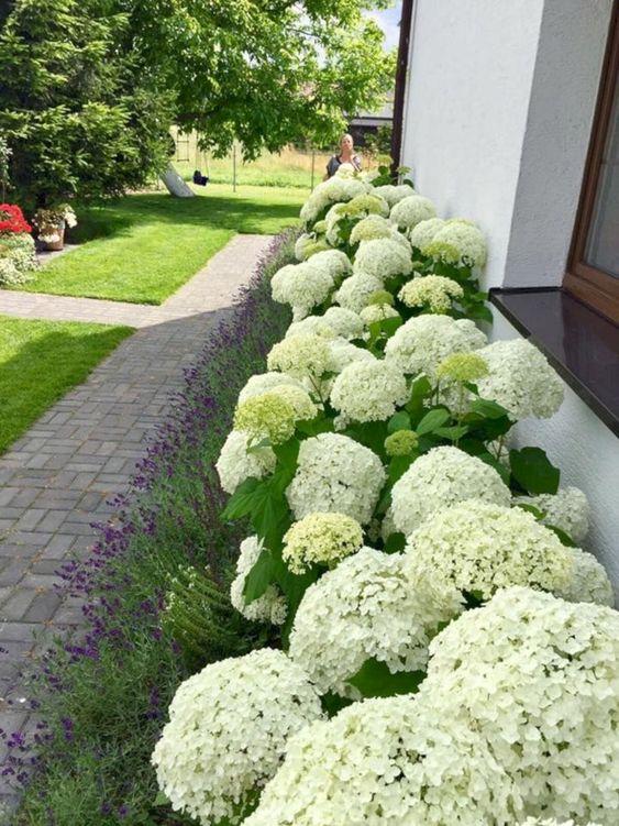 تصميم الحدائق المنزلية Pdf Qut Blog