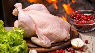 Photo of فوائد لحم الدجاج