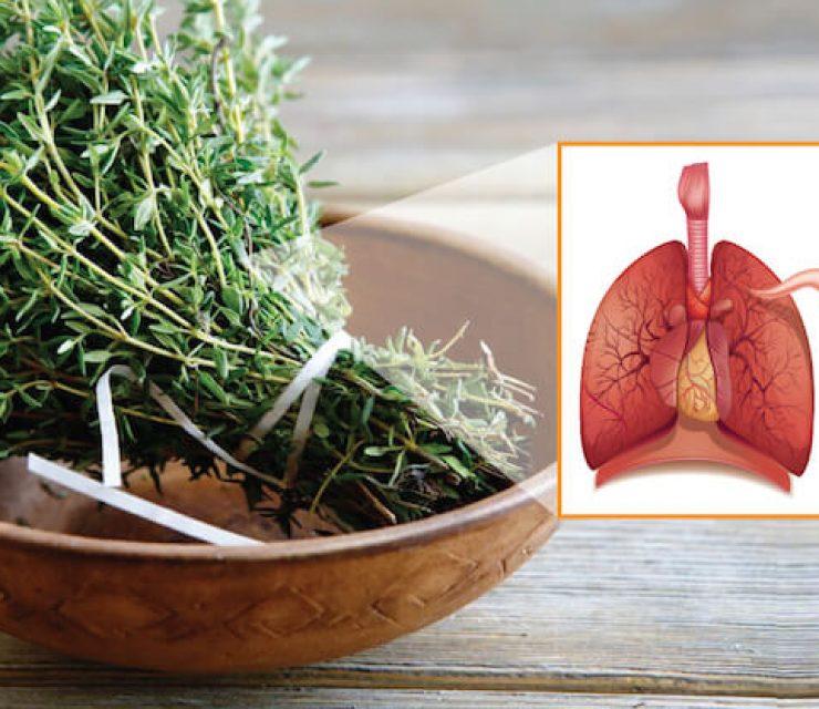 تنظيف الرئتين بالأعشاب