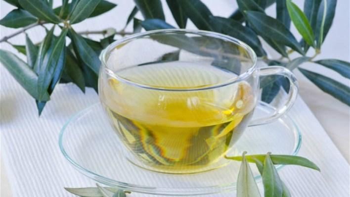 شاي أوراق الزيتون