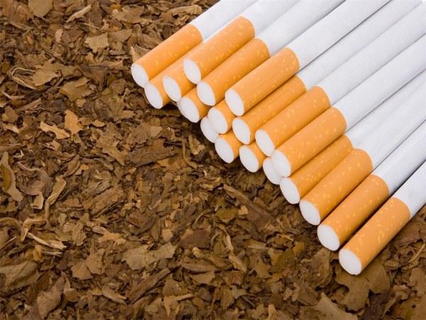 صورة التبغ المصنوع منه السيجارة