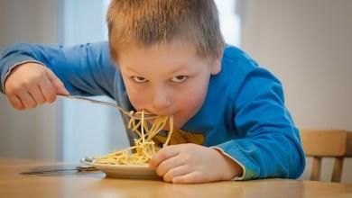 Photo of وجبات غداء للأطفال