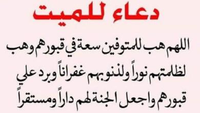 Photo of الدعاء للميت وما ينفعه بعد موته