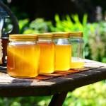 التاكد من جودة العسل النحل