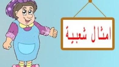 Photo of أمثال من حكايات جدتي المصرية