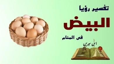Photo of تفسير حلم البيض فى المنام