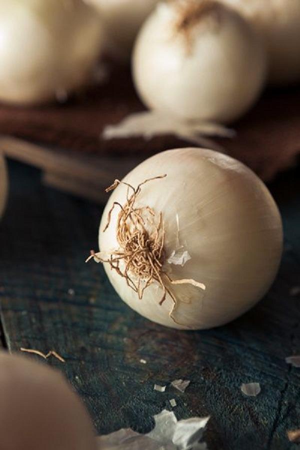 فائدة البصل البيض للجسم
